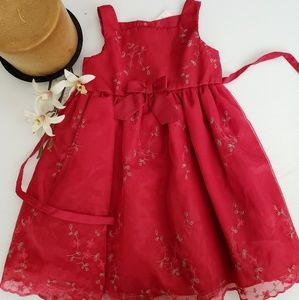 Organza Red Embroidery Holiday party dress